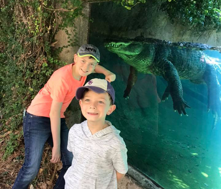 kids and American alligator